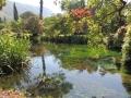 Riflessi-nellacqua-Amedeo-Schipani