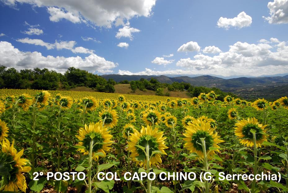 2-COL-CAPO-CHINO
