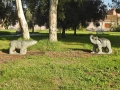 02-Il-parco-Casilino